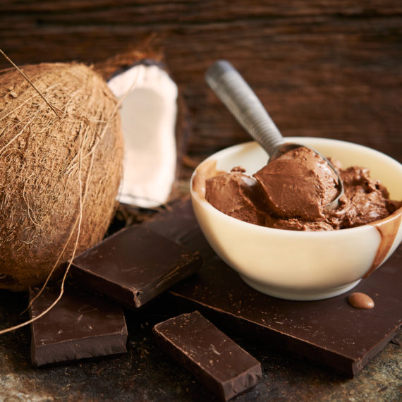 vegan chocolate coconut fudge ice cream